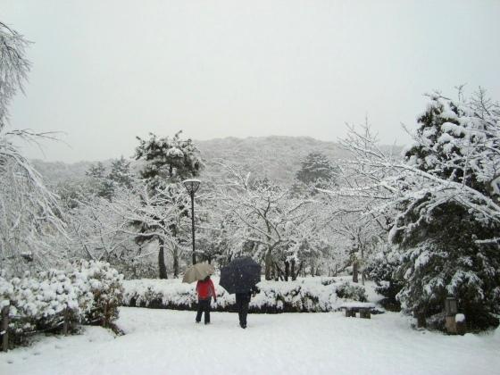 雪四条大晦日2010 124