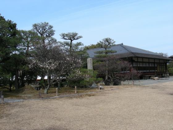 智積院渉成園梅2011-2 092