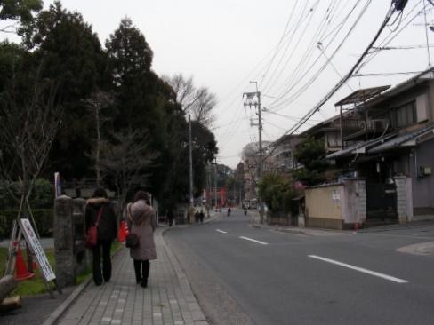 北野梅2011 013