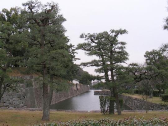北野梅2011 128