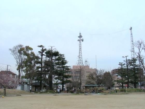 北野梅2011 126