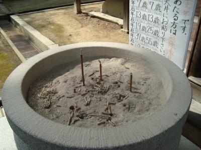 西賀茂桜2011 012