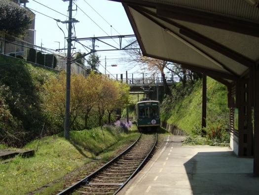 2011桜京福、円山 015