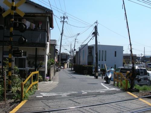 2011桜京福、円山望遠 006