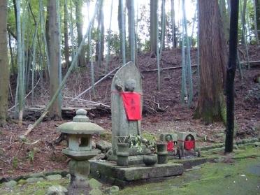 西賀茂桜2011 038