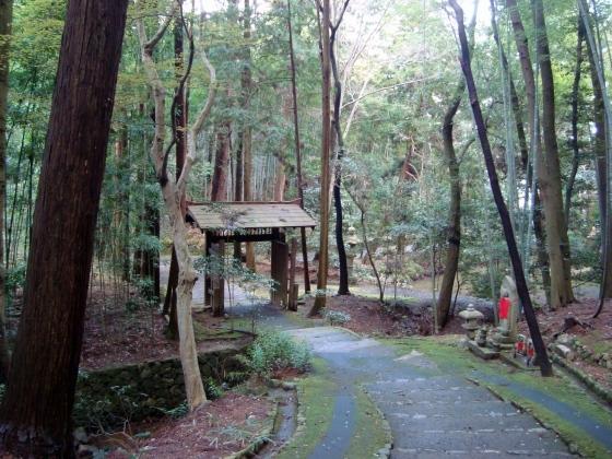西賀茂桜2011 040