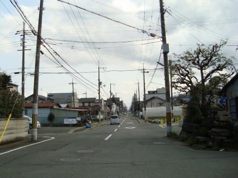 西賀茂桜2011 023