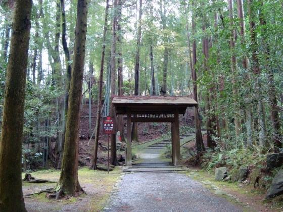 西賀茂桜2011 037
