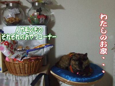 10_01_31_6.jpg