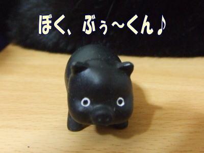 10_08_03_1.jpg
