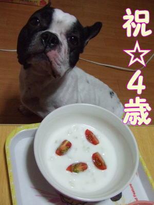 2010_08_12_1.jpg