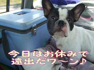 2010_08_24_1.jpg