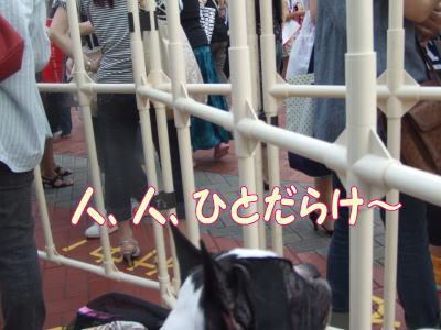 2010_08_24_6.jpg