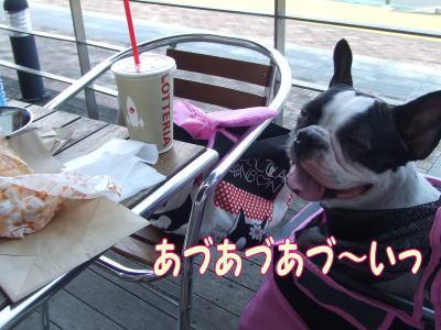 2010_08_24_9.jpg