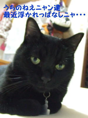 2010_08_31_1.jpg