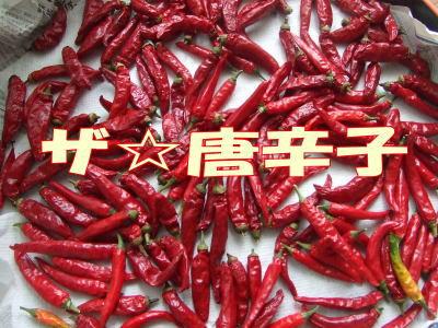 2010_09_25_1.jpg