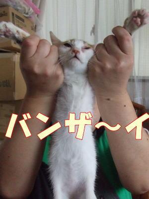 2010_10_16_6.jpg