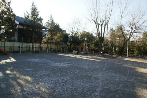 DSC05746冬1
