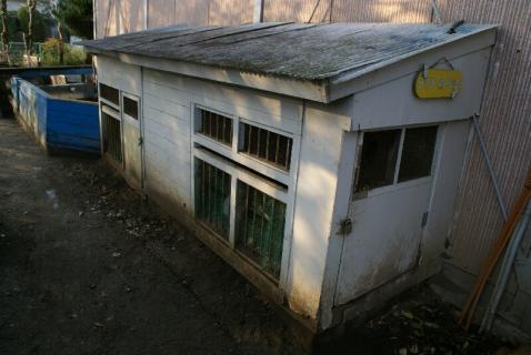 DSC06189ウサギ小屋