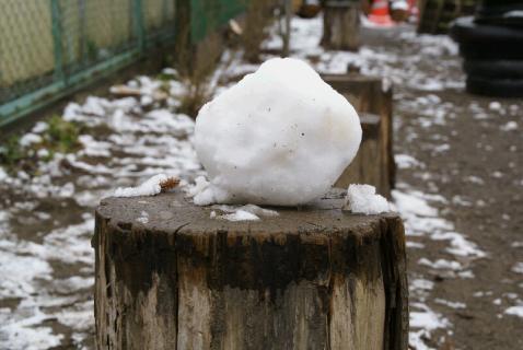 DSC01966雪だるま2
