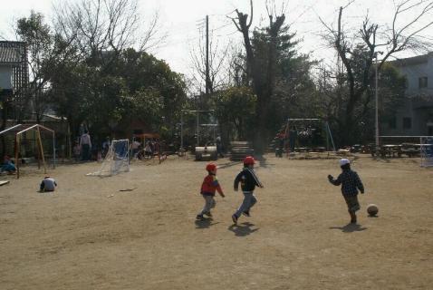 DSC02041園庭春