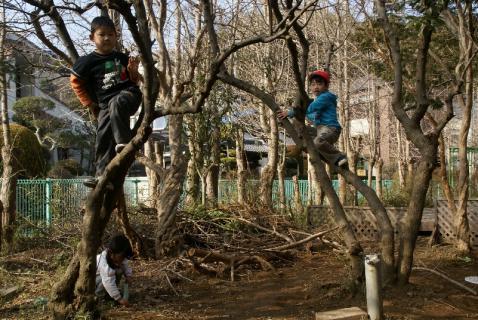 DSC02070木のぼり4