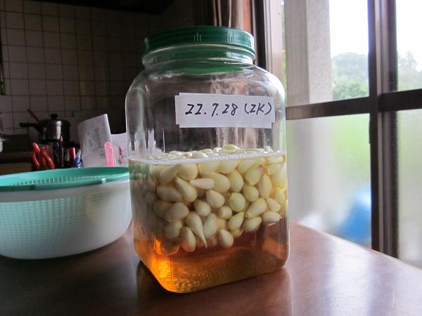 ラッキョウの収穫 10,7,26 009