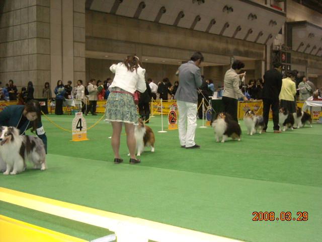 2008-アジアインター 016