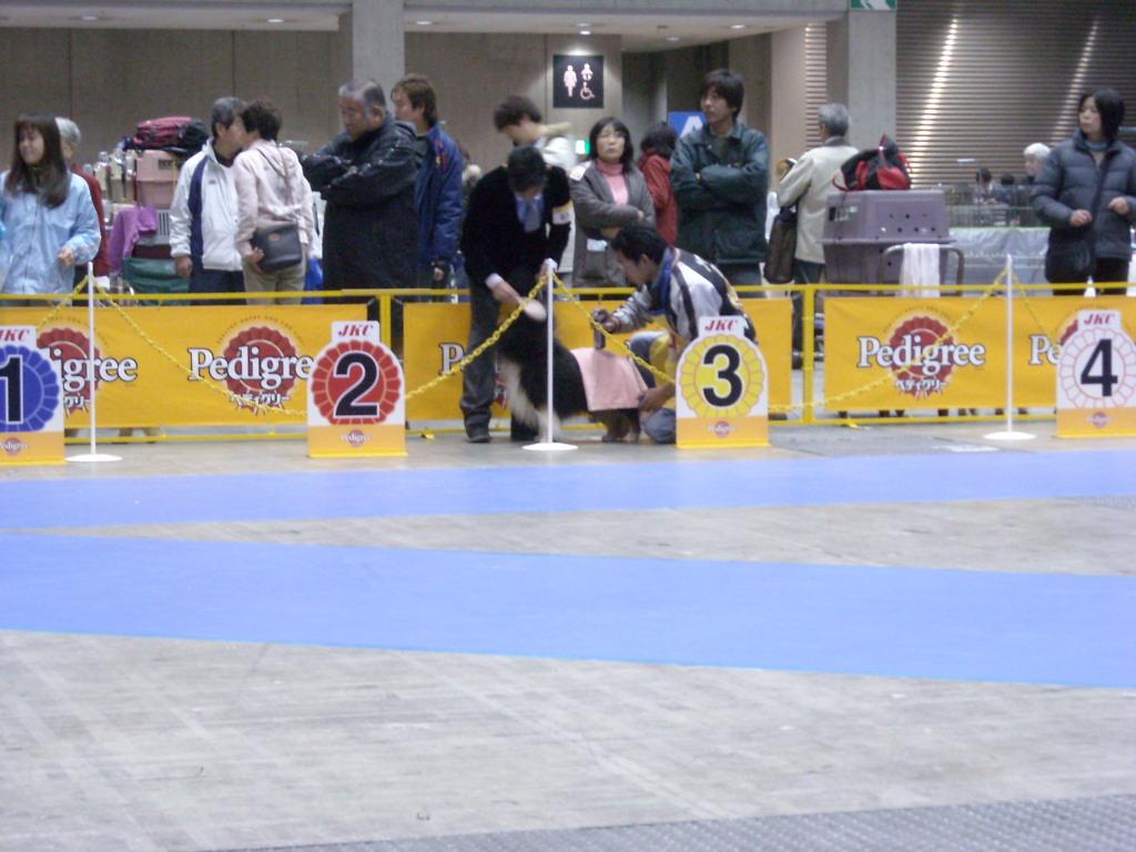 1216_JKC東京インター 017
