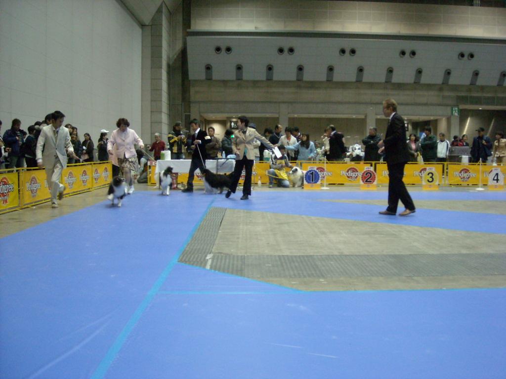1216_JKC東京インター 032