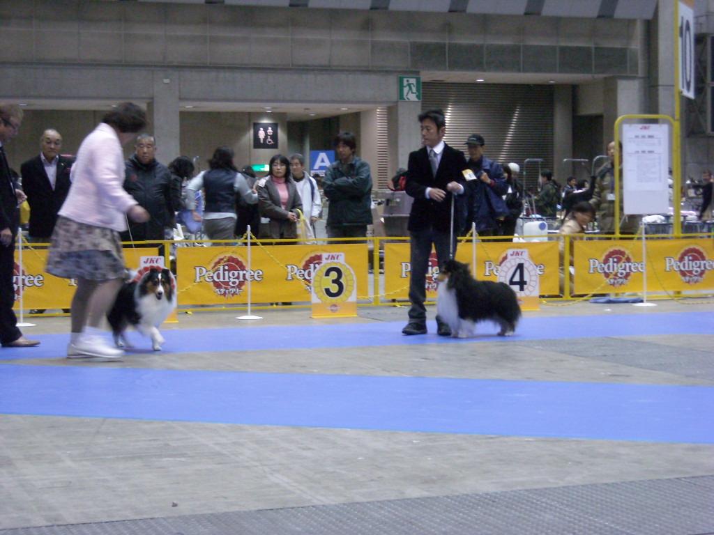1216_JKC東京インター 035