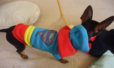 スーパーマン後ろ