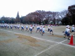 2008-11-29.jpg