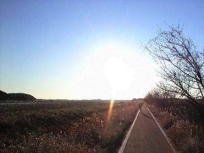 2009-01-11.jpg