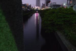 xP1060811.jpg