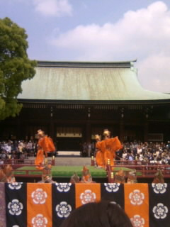 Meiji Shrine No5