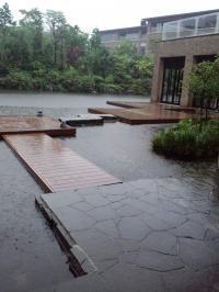 箱根甲子園2