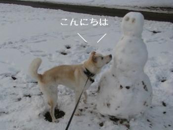 snowmann1213