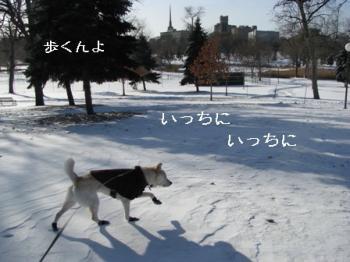 walking1215