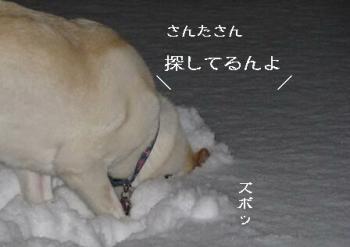sagasu1223