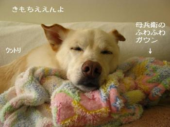 sleep1230