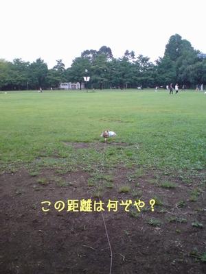 DSC00046p.jpg