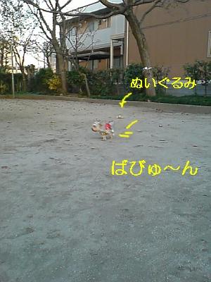 p20081113161104_01.jpg