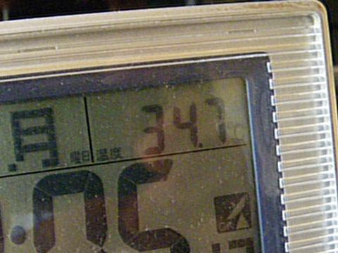 34.7度ある~