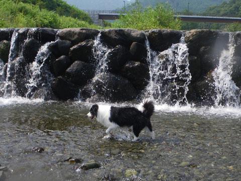 水遊びは楽しいな