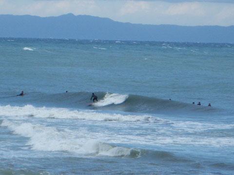 サーフィンしてる