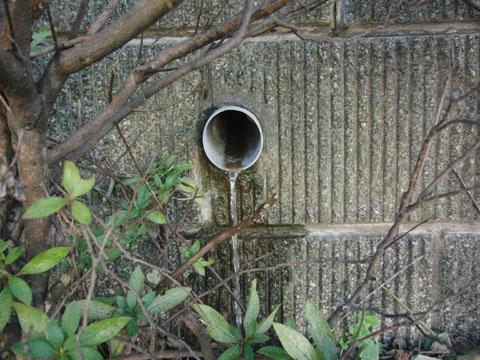 こっちの穴からも水が