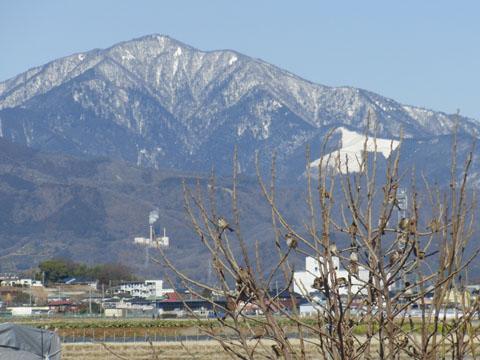 大山もきれい