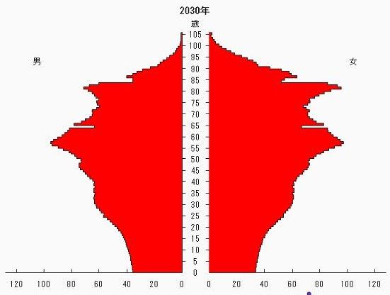 新しい人口ピラミッド20130