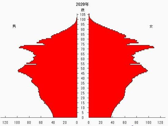新しい人口ピラミッド2020